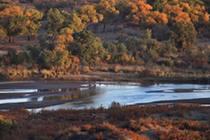 我國第二大內陸河黑河融冰水灌溉額濟納綠洲30余萬畝