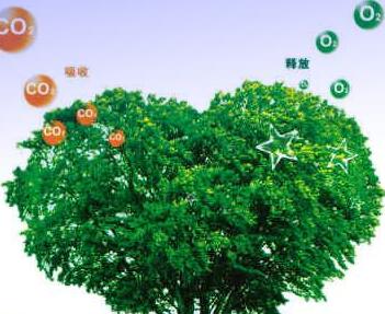 內蒙古首宗林業碳匯交易項目公開挂牌轉讓